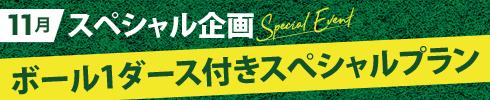 11月スペシャル企画 ボール1ダース付きスぺシャルプラン
