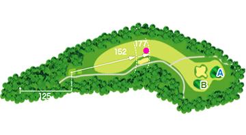 course no13